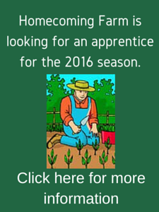 Looking for an apprentice for 2016 season