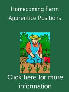 ApprenticeNew