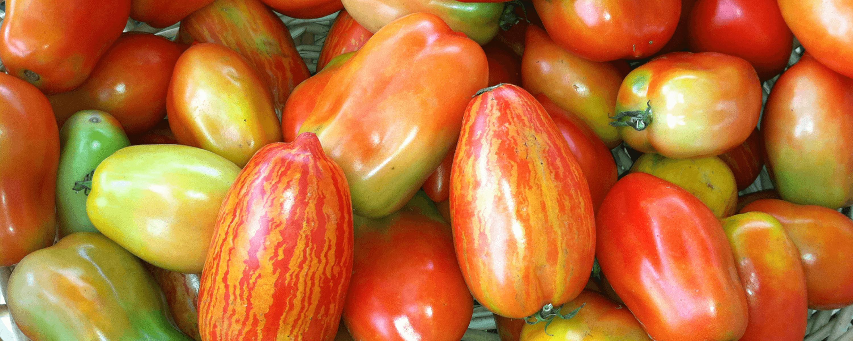 HomecomingSliders_0003_Elizabeth-Keihm—2.-Opening-Slide_tomatoes