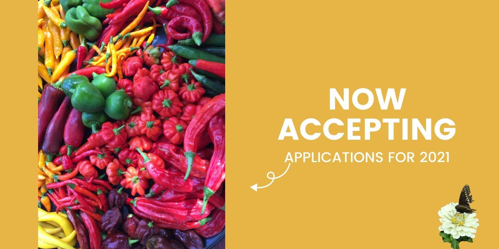 Homecoming slider image applications 2021